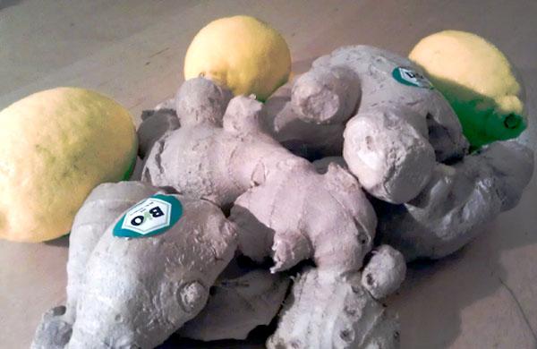 guter Bio-Ingwer und Zitronen